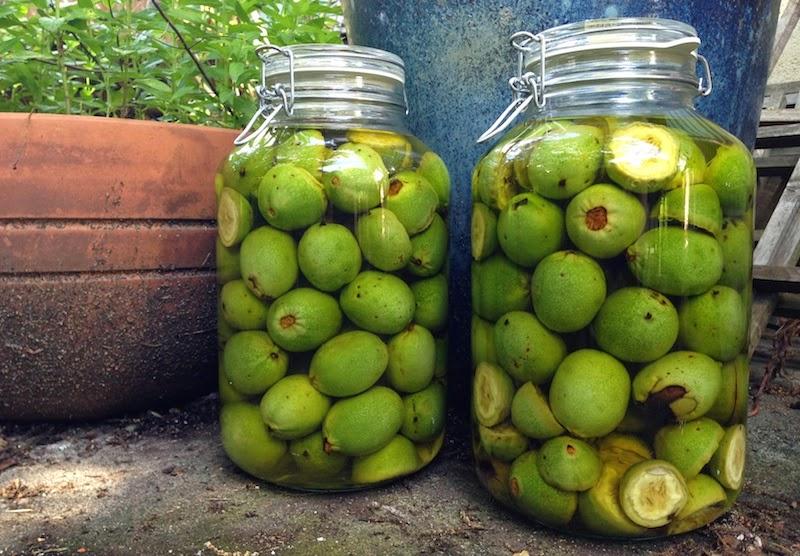 Как сделать водку из зеленых орехов 391