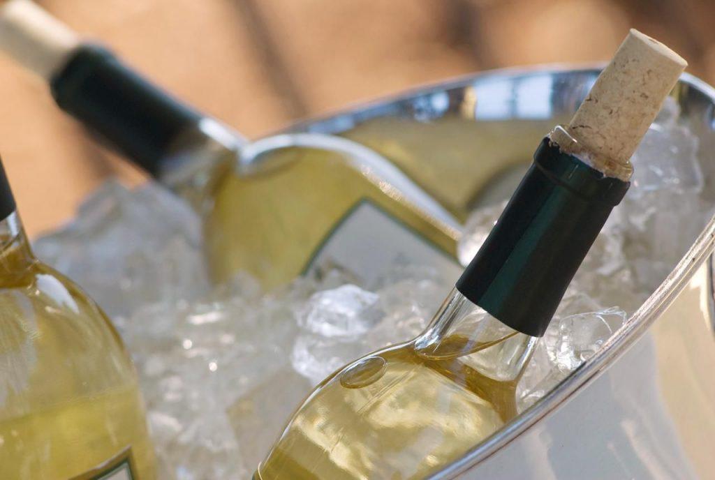вино sauvignon blanc