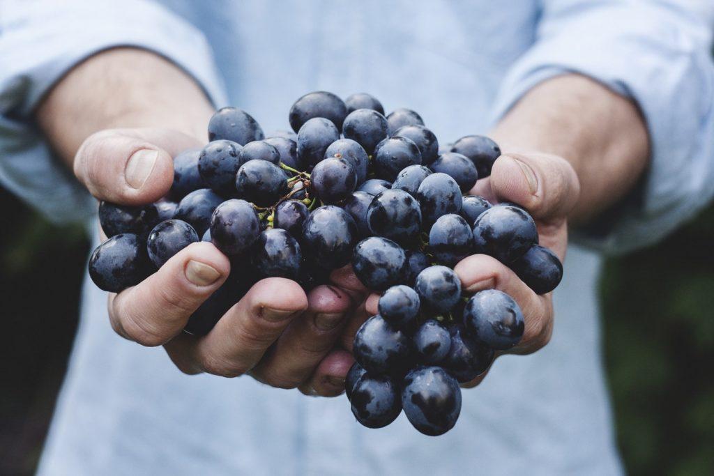 грузинское виноделие