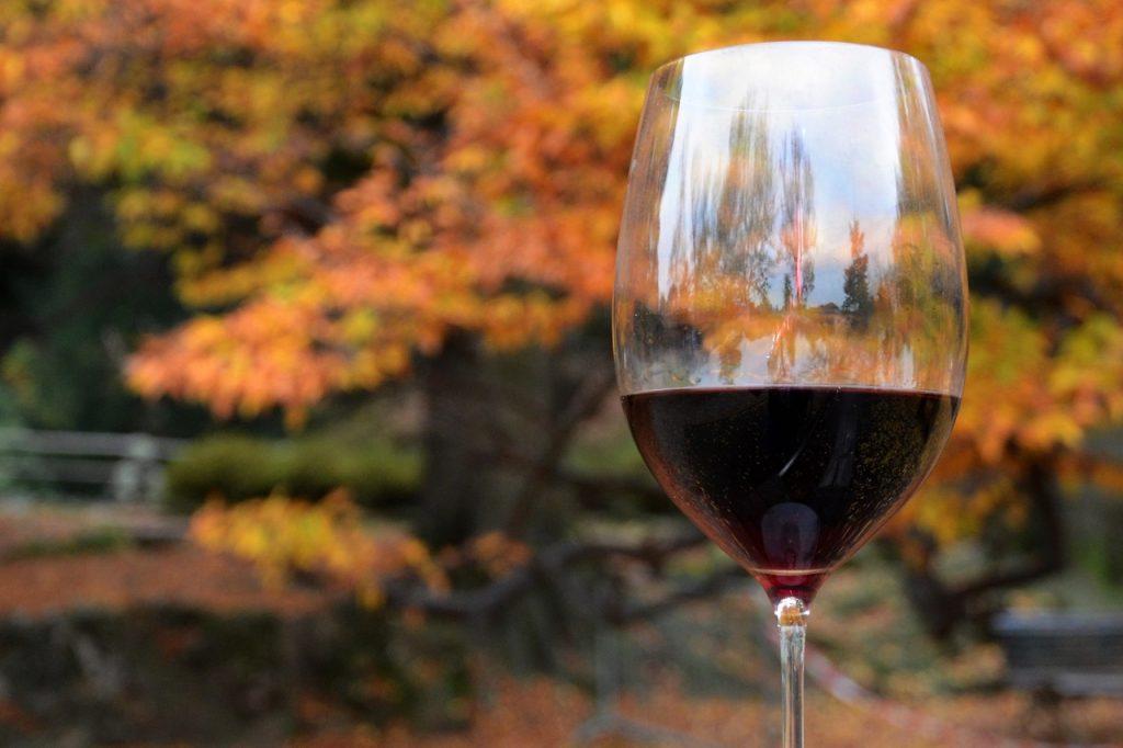 винопитие
